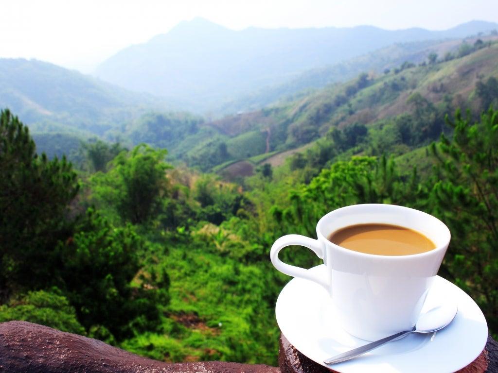 Will Green Mountain Coffee Need A Wakeup Call?
