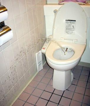Toilet Pranks Aplenty
