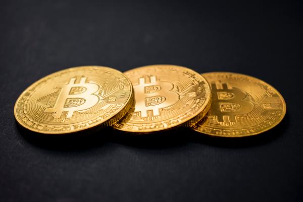 <bold>Bitcoin</bold> Whale <bold>Accounts</bold> Hit New Record High During Recent Crypto Carnage