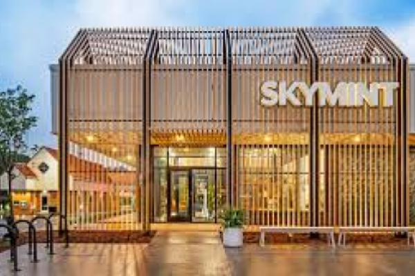 Michigan's SKYMINT Expands Footprint With $78M Financing, Acquisition Of 3Fifteen Cannabis