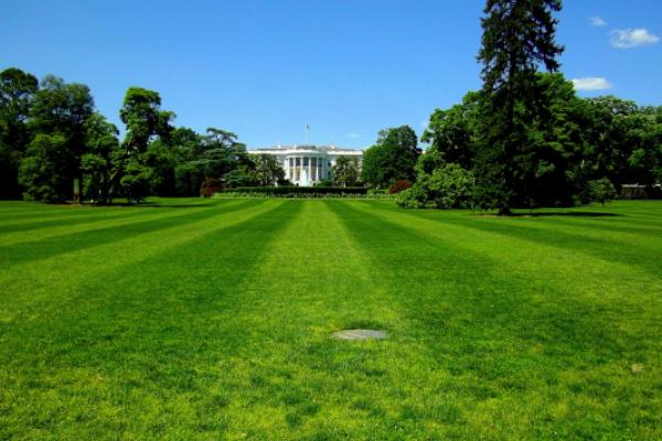 5 Election-Proof Stock Ideas Ahead Of Biden-Trump Decision