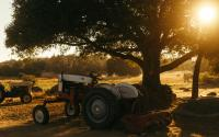 Deere Earnings Greeted With Cheer As Company Cites Improved Equipment Demand