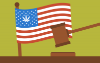 TGF - These 3 U.S. States Could Legalize Weed In 2021