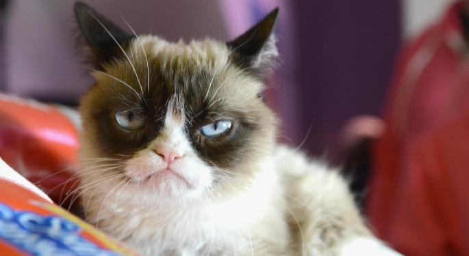 4 CEOs Who Are/Were Reportedly Grumpy Cats