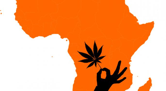Cannabis Production In Africa Could Help Local Communities While Rewarding Investors