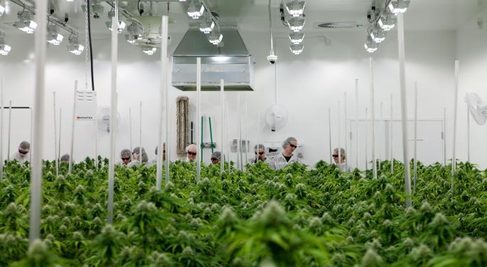 Aurora Cannabis Shares Soar On Sales Beat: 'A Case Of The Patient Being Presumed Dead, When Indeed It's Not'