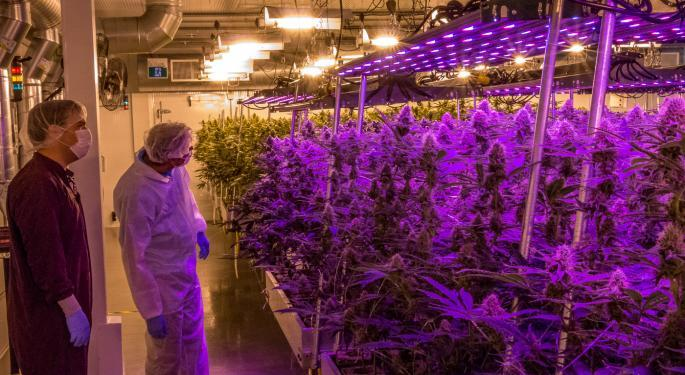 Stifel Cautious On Aurora Cannabis Given 'Lack Of A Definitive Strategy' In US