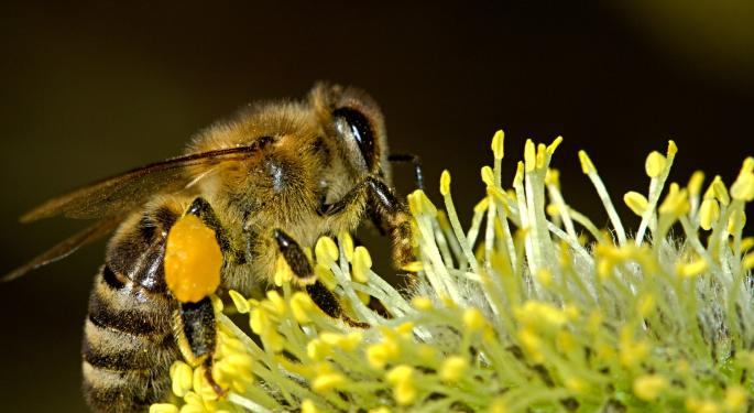 Could Hemp Farming Help Save The Bees?