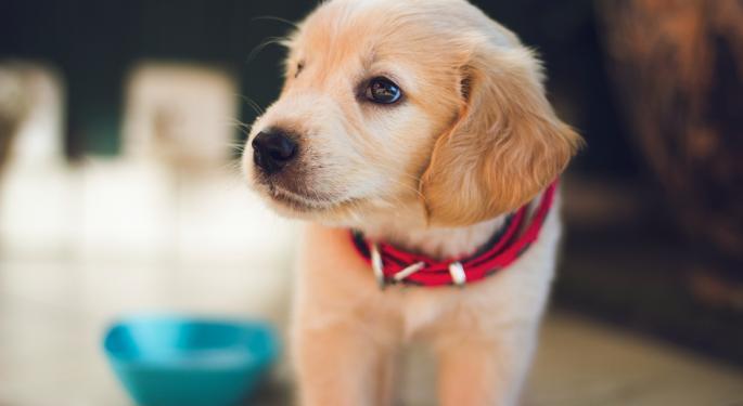 Bayer Sells $1.6B Stake In Elanco Animal Health
