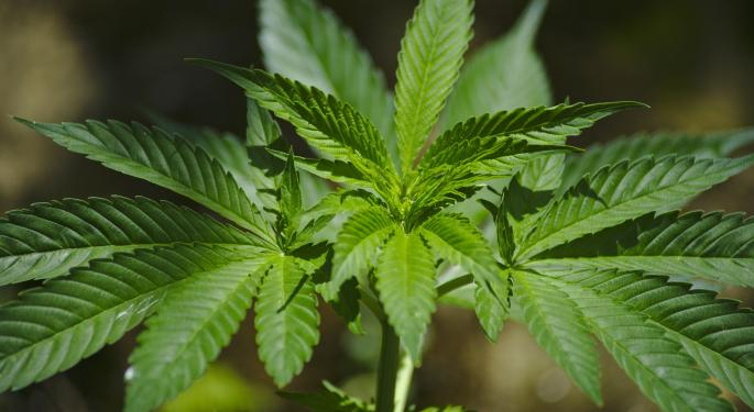 Cannabis Short Sellers Clean Up After Tilray's Earnings Miss