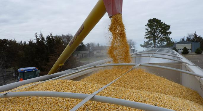 Japan Agrees To Buy More US Corn Under Trade Deal