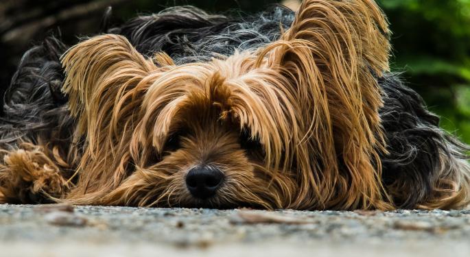 Credit Suisse: PetSmart Is Targeting PetMed's Core Business