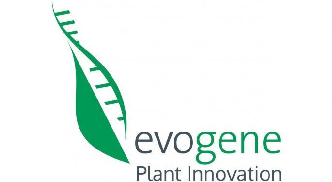 Evogene Posts Q1 Results, Suffers 67% YoY Revenue Decline