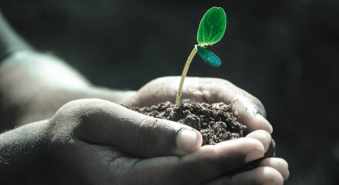 Green Bonds Gain Momentum