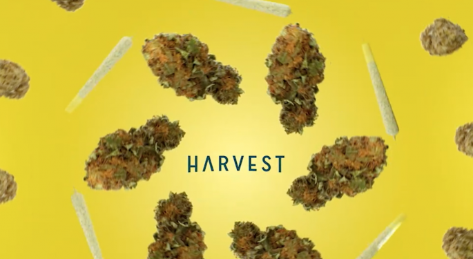 Harvest Health Posts Q4 Results, CEO Addresses Recent Litigation