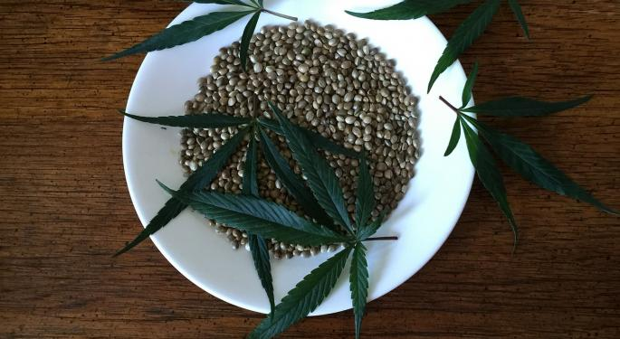 Why Hemp Could Be The Future Of Plastics