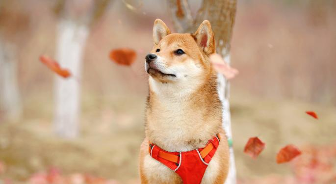 Dogecoin, 'The Most Honest Sh*tcoin,' Has Remarkably Strong Fundamentals, Concludes Galaxy Digital Research