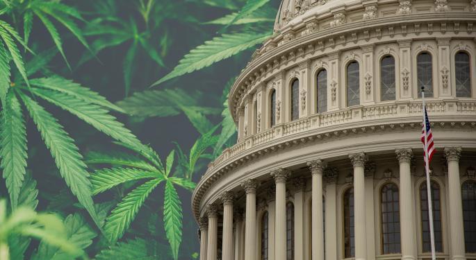BofA: Cannabis Legalization A Key Issue In 2020 US Presidential Election