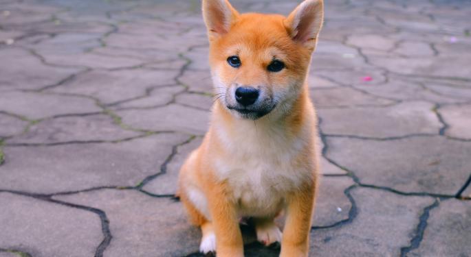 Shiba Inu registra más ganancias que Dogecoin