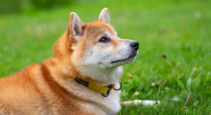 ¿Es cierto que Nano Dogecoin ha subido hoy un 9.000%?