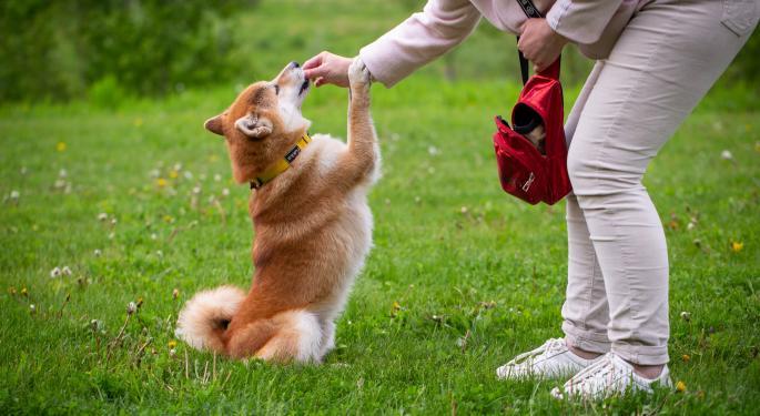Dogecoin dispara la demanda de perros Shiba Inu