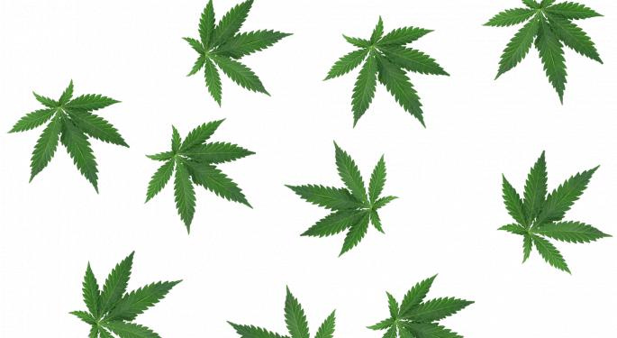 Cannabis Movers & Shakers: Grapefruit USA, Mind Medicine, Golden Leaf