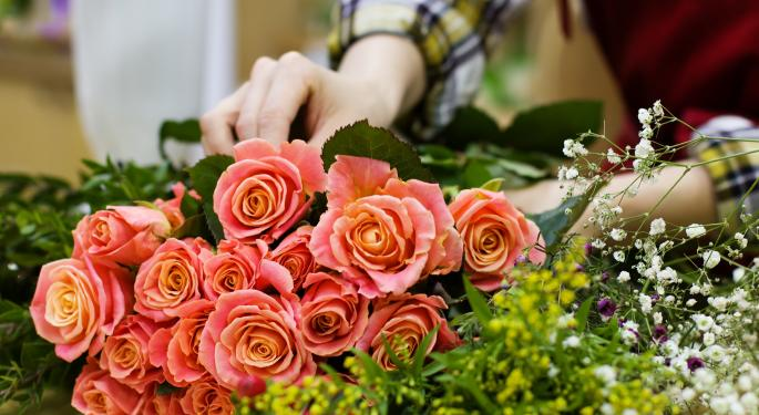 CBP Inspectors Check Imported Valentine's Day Flowers For Pests And Diseases