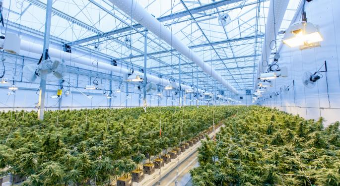 Cantor Remains 'Overweight' On Trulieve Cannabis Post Q1 Earnings, Praises Florida Operations