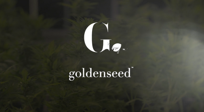 Cannabis, Hemp Company Goldenseed Files For RegA+ Stock Offering With SEC
