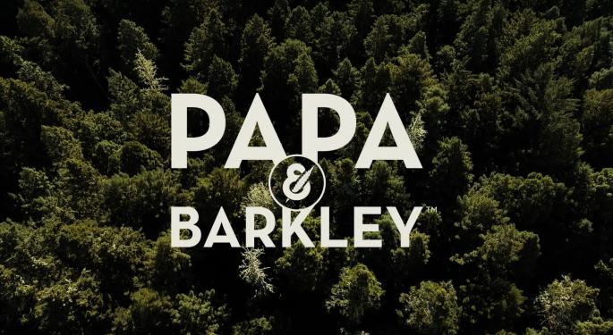 Video: The Heartwarming Origin Story Of Papa & Barkley