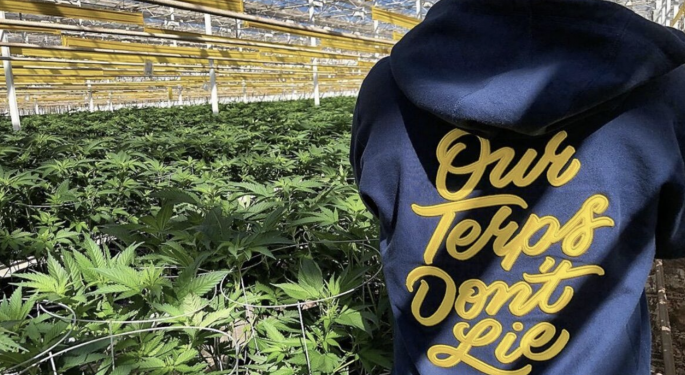 New Cannabis Products: DNA Genetics x Copperstate Farms, A Skincare Collection, And ALTWELL x Karena Dawn