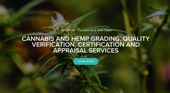 Big Tree Launches Cannabis, Hemp Grading Services For Fair Market Pricing