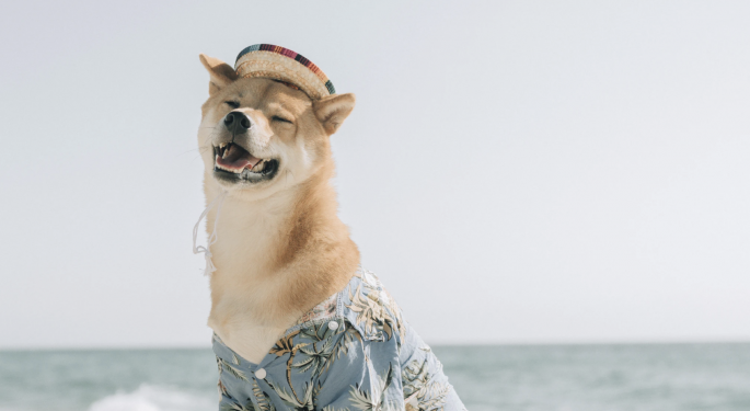 ¿Nuevo Dogecoin? El precio de SHIB sube un 150%