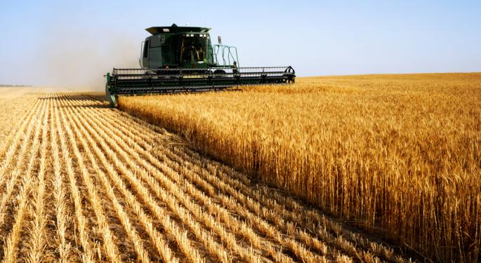 Factors that Will Affect Corn Prices in 2013
