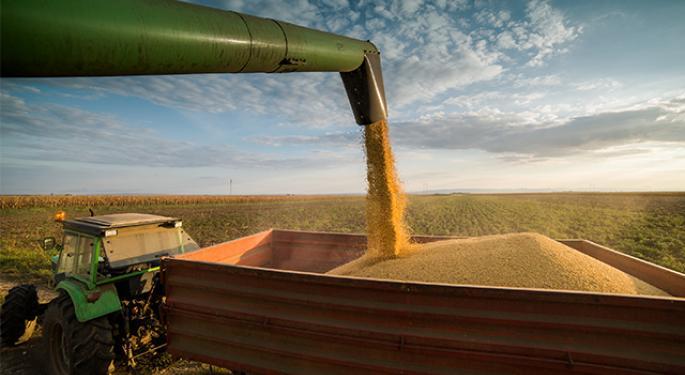 Why Brazil Has Grown As A Soybean Producer
