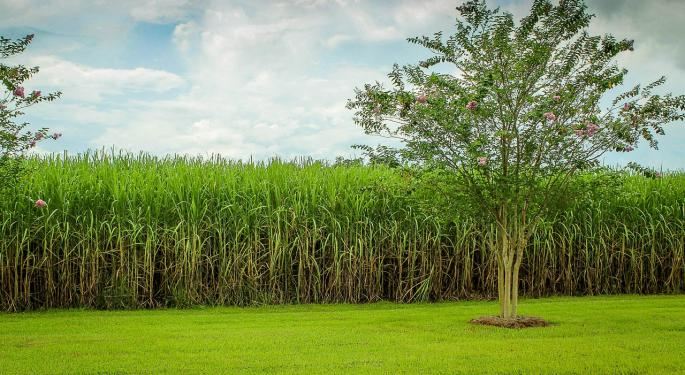 Are Brazilian Sugar Expectations Too High?