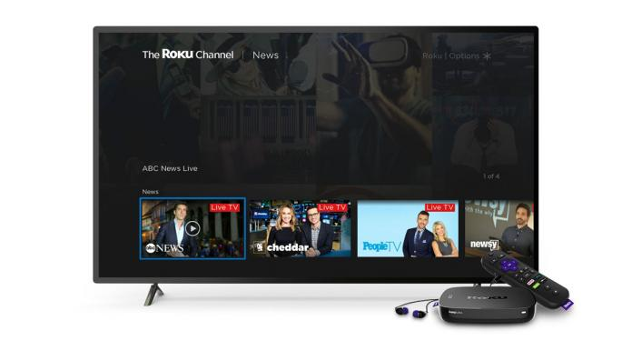 Roku Analyst Breaks Down What Black Friday Deals Mean For The Stock