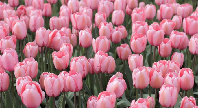 This Day In Market History: Peak Tulip Mania