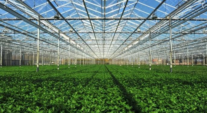 Village Farms Expands To Asia-Pacific Via Altum Deal