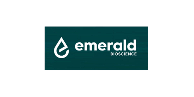 EMBI logo