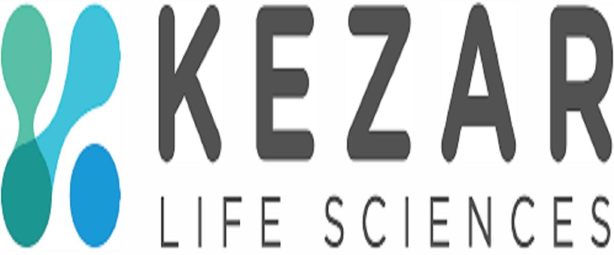 KZR logo